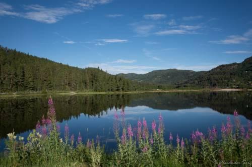 Norwegen Landschaft D72 0600