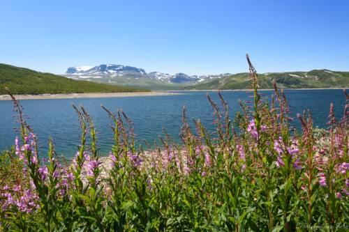 Norwegen Landschaft D72 9710