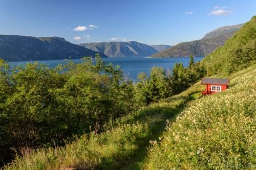 Norwegen Landschaft D72 9788