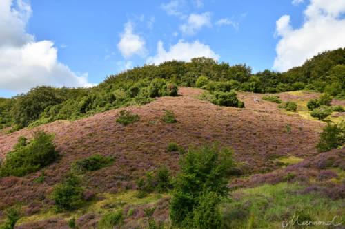 Wanderer erklimmen die sanften Hügel