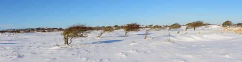 Dänemark Rubjerg Knude Fyr Winter--4