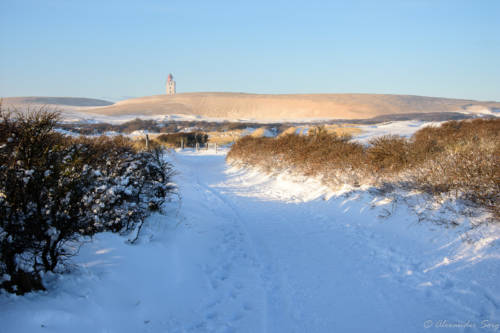Dänemark Rubjerg Knude Fyr Winter-5640