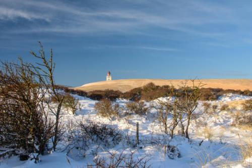 Dänemark Rubjerg Knude Fyr Winter-5649