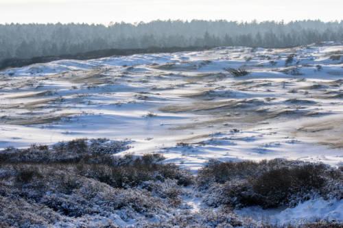 Dänemark Rubjerg Knude Fyr Winter-5809