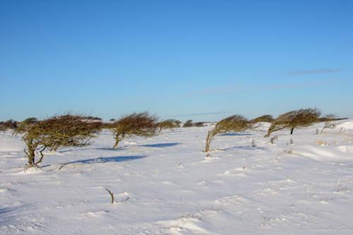 Dänemark Rubjerg Knude Fyr Winter-5892
