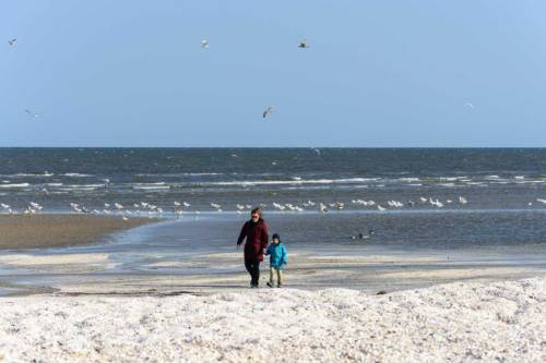 Saeby Ostsee 2019-6987