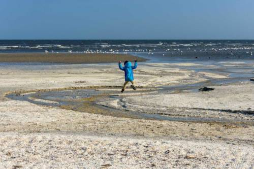 Saeby Ostsee 2019-7005