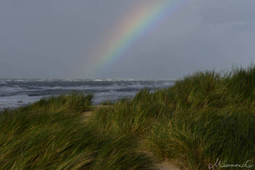 Dänemark im September - Regenbogen über der Nordsee