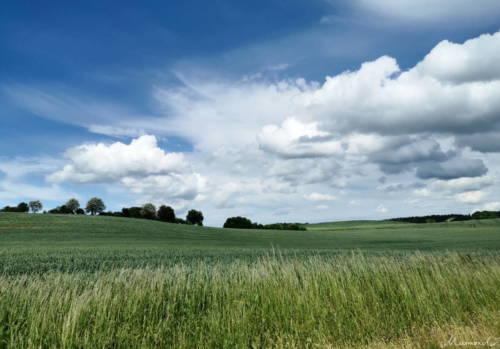 Landschaft Djursland