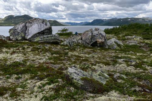 Norwegen Fjell Felsen