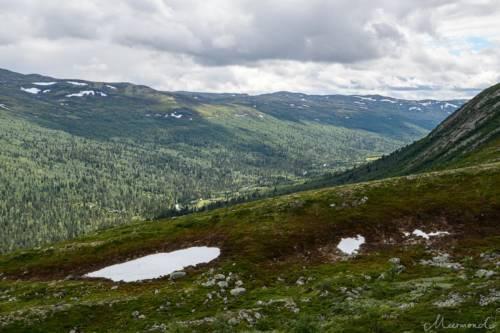 Uvdal-Norwegen-1489