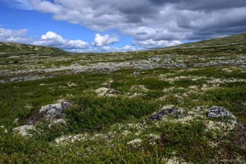 Uvdal-Norwegen-1492