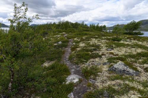 Uvdal-Norwegen-1526