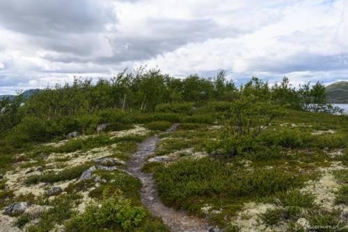 Uvdal-Norwegen-1528
