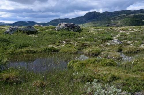 Uvdal-Norwegen-1571